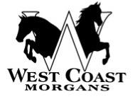 West Coast Morgans, Inc. Logo