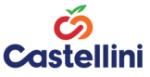 Castellini Logo