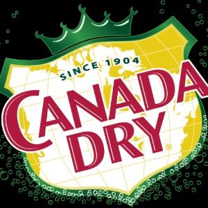 Canada Dry Delaware Valley Logo