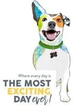 Dogtopia of Mount Kisco Logo